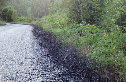 El asfalto cubre las cunetas y la maleza más próxima a la calzada