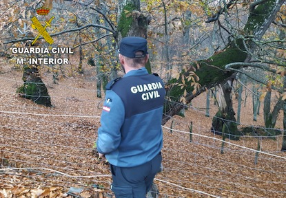 La Guardia Civil ha desarrollado un plan de vigilancia de los sotos